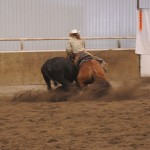 One of my favorite horses in action